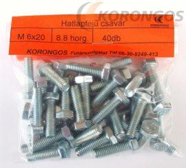Hatlapfejű csavar M  6x20 40db-os kiszerelésben
